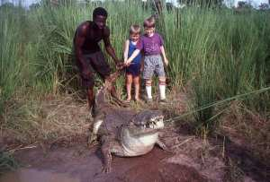 Mark and Matthew with crocodile at Sabou