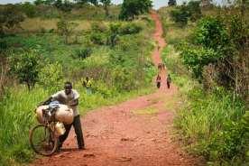 Long road in Mono area